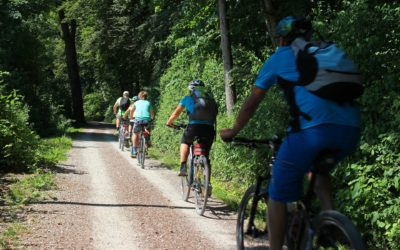 Les Alpilles à vélo autour d'Orgon