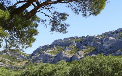 Randonnées dans les Alpilles depuis Orgon